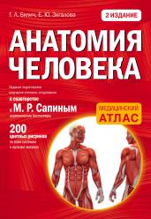 Анатомия человека: 2 изд.