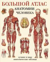 Большой атлас анатомии человека(в табл)